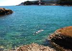 竜串桜浜海岸